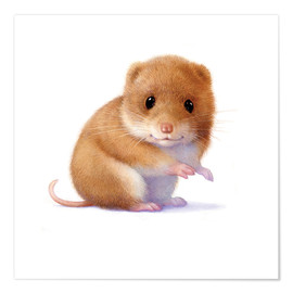 Poster Little mouse