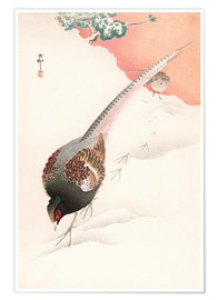 Poster  A Pair of Pheasants in the Snow - Ohara Koson