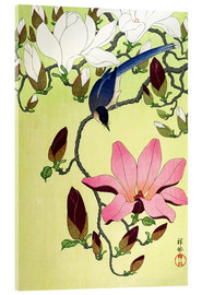 Verre acrylique  Magpie with Pink and White Magnolia Blossoms - Ohara Koson