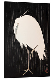 Alu-Dibond  White Crane in the rain - Ohara Koson