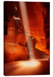 Tableau sur toile  Upper Antelope Canyon - David Wall