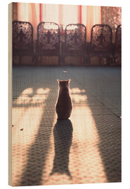Bois  Cat at the window - Matteo Colombo