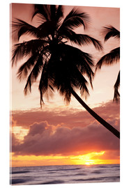 Verre acrylique  Tropical sunset, Bridgetown, Barbados, West Indies, Caribbean, Central America - Angelo Cavalli