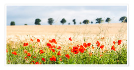 Poster  Poppies on the sidelines - Matthew Williams-Ellis