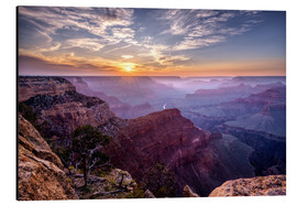 Alu-Dibond  Sunset at Grand Canyon - Daniel Heine