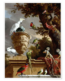 Melchior de Hondecoeter - The Menagerie