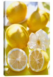 Toile  Citrons - K&L Food Style