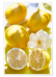 Poster  Citrons - K&L Food Style