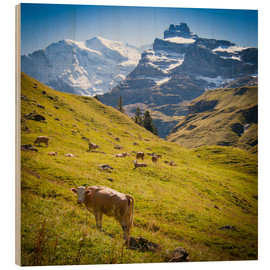 Bois  Cow in the Swiss Alps - Jan Schuler