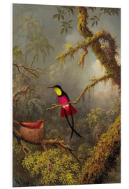 Tableau en PVC  Couple de colibris topaze - Martin Johnson Heade