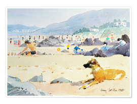 Poster Dog on the Beach, Woolacombe
