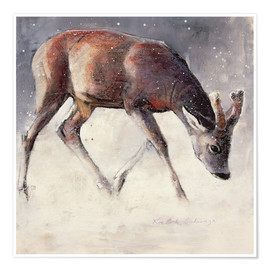 Poster  Jung deer in winter - Mark Adlington