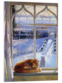 Tableau en verre acrylique  Cat in the Window - Timothy Easton