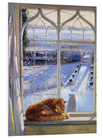 Forex  Cat in the Window - Timothy Easton