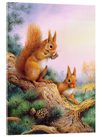 Tableau en verre acrylique  Pair of Red Squirrels on a Scottish Pine - Carl Donner