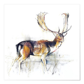 Poster Study of a Stag