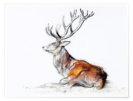 Poster  Cerf allongé - Mark Adlington