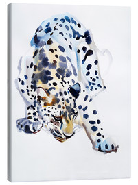 Toile  Arabian Leopard - Mark Adlington
