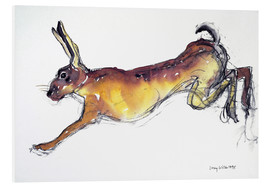 Forex  Jumping Hare - Lucy Willis