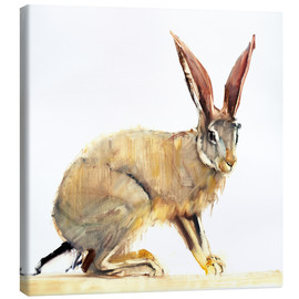 Toile  Rabbit - Mark Adlington