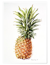 Poster  Ananas, 1997 - Alison Cooper