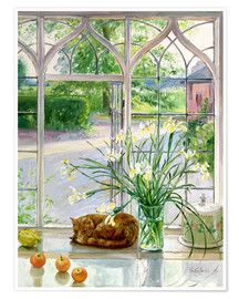 Poster  Chat dormant à la fenêtre - Timothy Easton