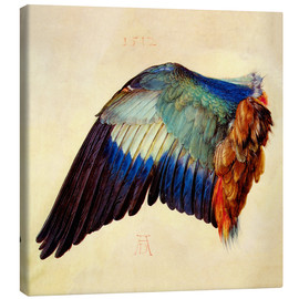 Toile  Wing of a blue roller - Albrecht Dürer