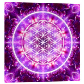 Verre acrylique  Flower of Life - Transformation - Dolphins DreamDesign
