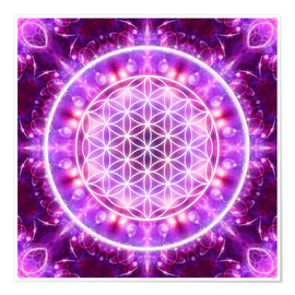 Poster  Flower of Life - Transformation - Dolphins DreamDesign