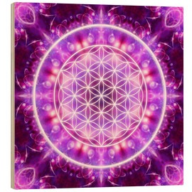 Bois  Flower of Life - Transformation - Dolphins DreamDesign