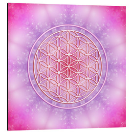 Alu-Dibond  Flower of Life - Unconditional Love - Dolphins DreamDesign