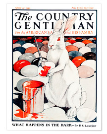 Remsberg - Cover of Country (White Rabbit)