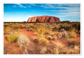 Poster  Ayers Rock in the evening - Matteo Colombo