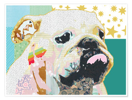 Poster Bouledogue collage