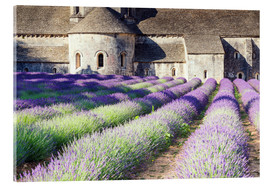 Verre acrylique  Famous Senanque abbey with its lavender field, Provence, France - Matteo Colombo