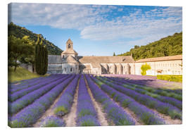 Toile  Famous Senanque abbey with lavender field, Provence, France - Matteo Colombo