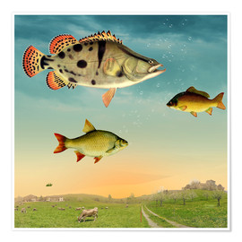 Poster fishes