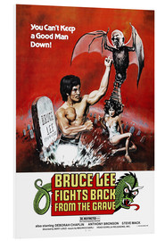 Tableau en PVC  Bruce Lee Fights Back from the Grave (anglais) - Entertainment Collection