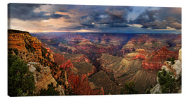 Tableau sur toile  Grand Canyon View - Michael Rucker