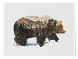 Poster  Arctic Grizzly Bear - Andreas Lie