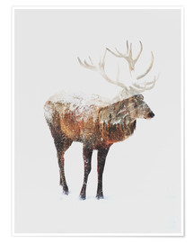 Poster  Cerf arctique - Andreas Lie