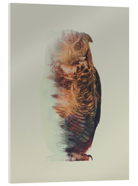 Verre acrylique  Norwegian Woods The Owl - Andreas Lie