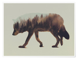 Andreas Lie - Norwegian Woods The Wolf