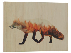 Andreas Lie - Norwegian Woods The Fox