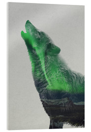 Tableau en verre acrylique  Howling in the Aurora Borealis - Andreas Lie