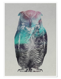 Andreas Lie - Owl in the aurora borealis