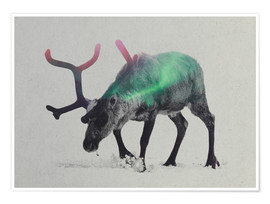 Poster  reindeer in the aurora borealis - Andreas Lie