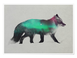 Poster  Fox In The Aurora Borealis - Andreas Lie