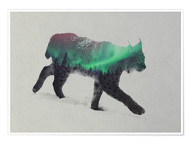 Poster  Lynx in the aurora borealis - Andreas Lie