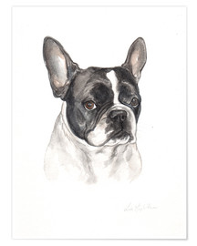 Poster  Bouledogue français - Lisa May Painting